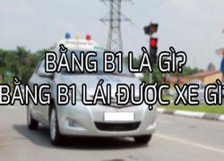 Bằng lái xe ô tô hạng B1