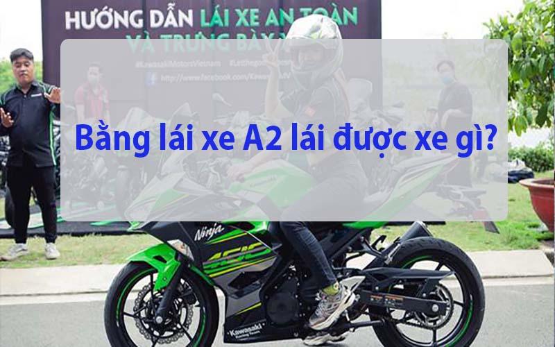 Bằng lái xe mô tô A2 lái được xe gì?