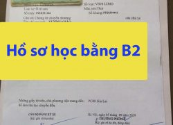 Trường dạy học bằng lái xe ô tô B2 giá rẻ tại TPHCM